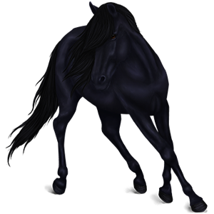 Jezdecký kůň Knabstrup Vraník