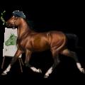 Ratsuhevonen Holsteininhevonen Liinakko