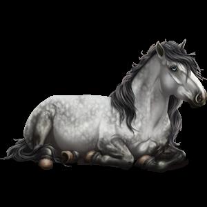 Draft horse Percheron Mouse Gray