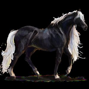 Riding Horse Mustang Chestnut