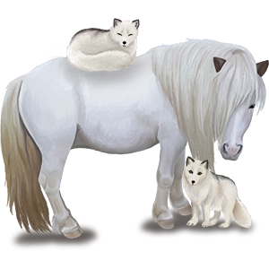 Pegasus pony Shetland Light Grey