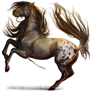 Ridepegasus Mustang Svart