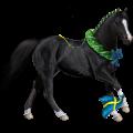 Riding Horse Hanoverian Mouse Grey