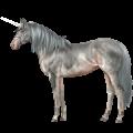 Riding unicorn Purebred Spanish Horse Cremello