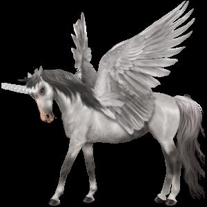 Winged riding unicorn Shagya Arabian Light Grey
