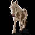 Pegasus pony Shetland Palomino Tobiano