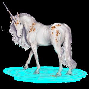 Riding unicorn Marwari Light Gray