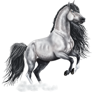 Верховая лошадь Ахалтекинская Красно-гнедая