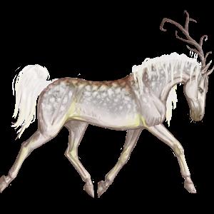 Riding unicorn Irish Hunter Fleabitten Gray