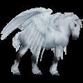 Draft Pegasus Percheron Light Gray