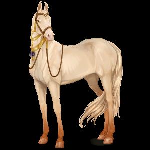 Верховая лошадь Ахалтекинская Кремелло