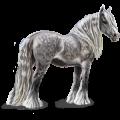Trekpaard Percheron Lichtgrijs