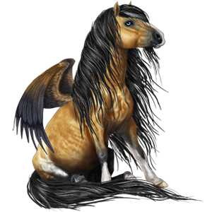 Pegasus pony Welsh Bay