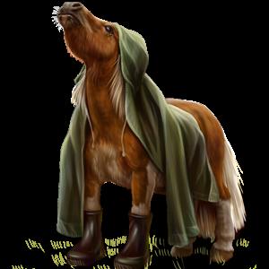 Pony Kerry Bog Chestnut Tobiano