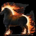 Draft horse Drum Horse Bay