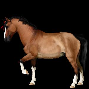 Pony Kerry bog Brun
