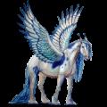 Winged draft horse Drum Horse Bay Tobiano