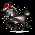 Donkey Donkey White
