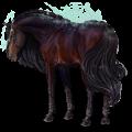 Pegaz Koń luzytański Gniada