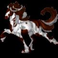 Riding Horse Paint Horse Dark bay Tobiano