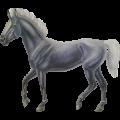 Riding Horse KWPN Flaxen Chestnut