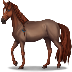 Riding Horse Purebred Spanish Horse Mouse Gray