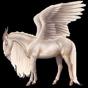 Winged riding unicorn Camargue Light Gray