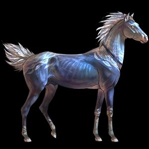 Pegaz wierzchowy Mustang Kasztanowatodereszowata
