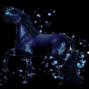 Riding Horse Paint Horse Black Overo