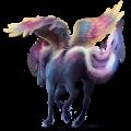 Pegasus Lusitano Dun
