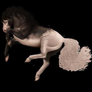 Koń wierzchowy Quarter Horse Kara