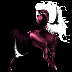 Riding unicorn Arabian Horse Strawberry roan