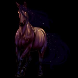 Jazdecký Pegas Marwarský kôň tmavý ryšiak