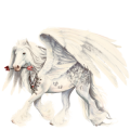 Draft Pegasus Percheron Dapple Gray