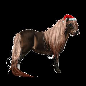 Pony Shetlander Palomino