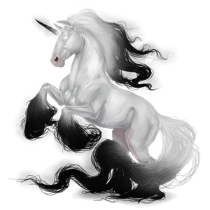 Riding unicorn Appaloosa Black Leopard