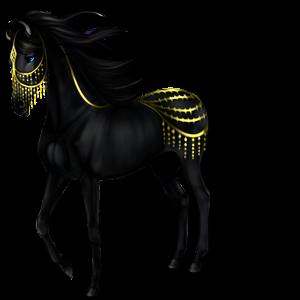 Koń wierzchowy Criollo Skarogniada