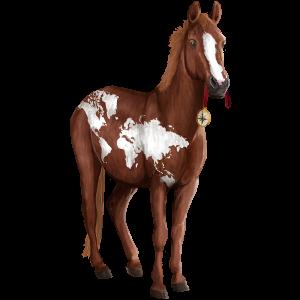 Jazdecký kôň Americký Paint Horse gaštanový Overo