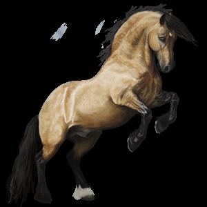 Ponypegas Velšský kůň Bělouš