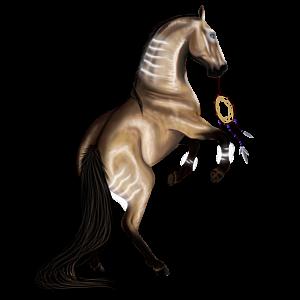 Cavalo de passeio Quarto de Milha Lobuno