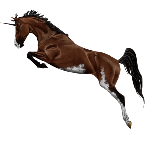 Riding unicorn Selle Français Light Grey