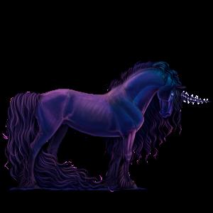 Riding unicorn Marwari Dark Bay