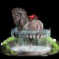Rijpaard Andalusiër Bruin