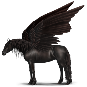 Riding pegasus Quarter Horse Dark Bay