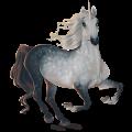 Unicorn Purebred Spanish Horse Dapple Gray