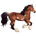 Pegasus Gypsy Vanner Mouse Gray