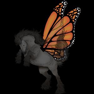 Pégase de trait Drum Horse Pie Tovero Noir