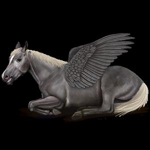 Riding pegasus Mustang Cremello