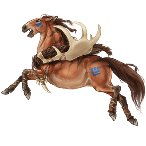 Riding Horse Nokota Black