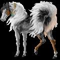 Ratsuhevonen Holsteininhevonen Rautias